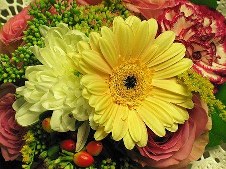 Bouquet, Chrysanthemum, Nature, Flowers, Decorative