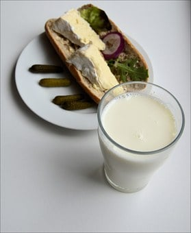 Bread, Milk, Breakfast, Sandwich, Cheese, Healthy