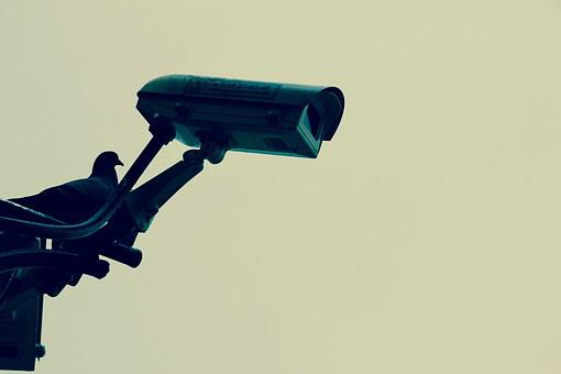 Camera, Monitoring, Security, Personal Protection