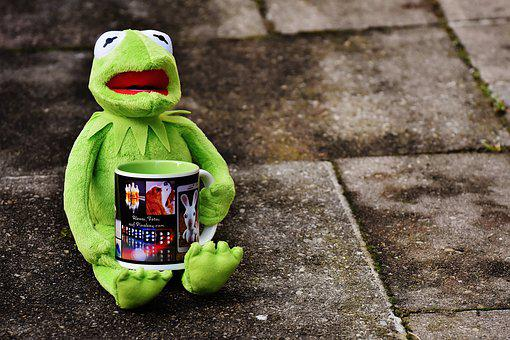 Kermit, Cup, Drink Coffee, Coffee Cup, Funny, Cute