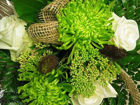 Bouquet, Chrysanthemum, Nature, Flowers, White