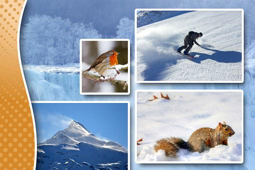 Winter, Season, Decoration, Gold, Die Cut, Hack