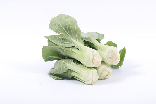 Bok Choy, Vegetable, Salted Vegetables
