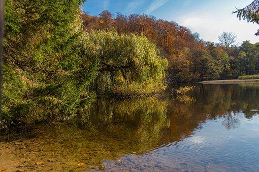 Lake, Waterfront, Landscape, Water, Nature, Reflection