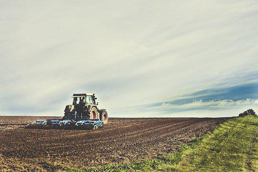 Agricultural Machine, Arable, Agriculture