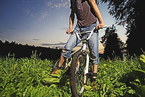 Bmx, Bike, Forest, Cycle, Action, Tasks, Balance