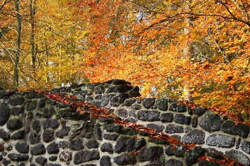 Autumn, Wall, Clumping Stone, Feilenmoos, Leaves
