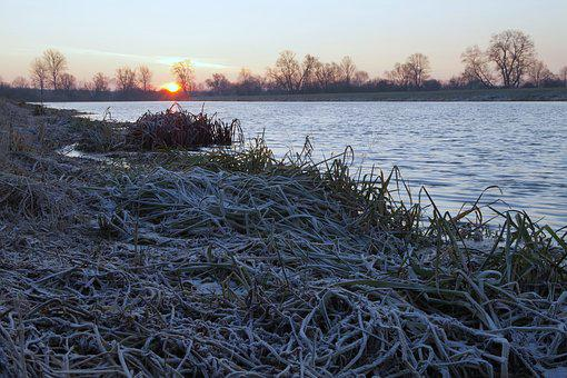 Morning, Frost, East, The Sun, Freezers, Frosty, Frozen
