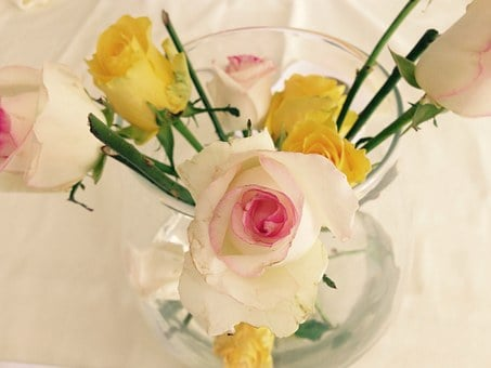 Rose, Flowers, Vase, Party, Luck, Hobby, Creative, Love
