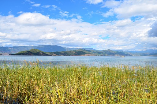 Blue Sky, White Cloud, Lake, Alpine, Open Country, Reed