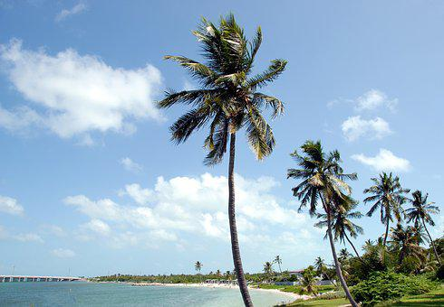 Bahia Honda, State Park, Florida, Key West