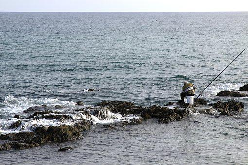Fisherman, Fishing, Cane, Sea, Beach, Water