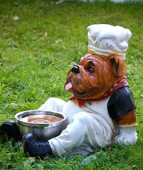 Dog Bowl, Dog, Water, Drink, Dogbar, Animal, Dog Food