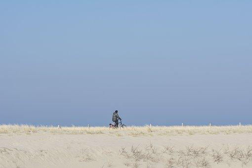Beach, Dunes, Cycling, Dune, Marram Grass, Netherlands