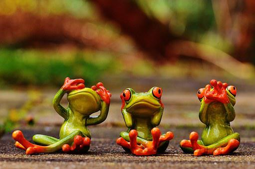 Frogs, Not See, Not Hear, Do Not Speak, Funny, Cute