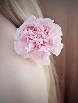 Flower, Carnation, Carnation Pink, Pink Flower, Pink