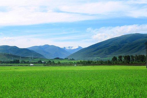 Views, Summer, Blue Sky, Alpine, The Sichuan-tibet