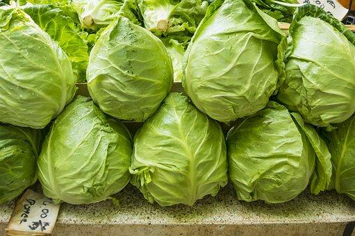 Salad, Green, Fresh, Eat, Vitamins, Mixed Salad