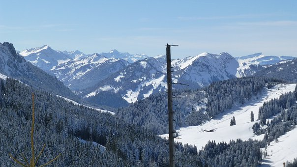 Allgäu, Winter, Mountains, Sun, Trees, Panorama