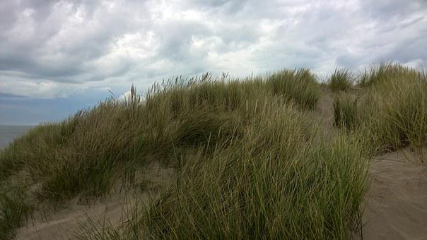 Dune, Dunegrass, Sand, Coast