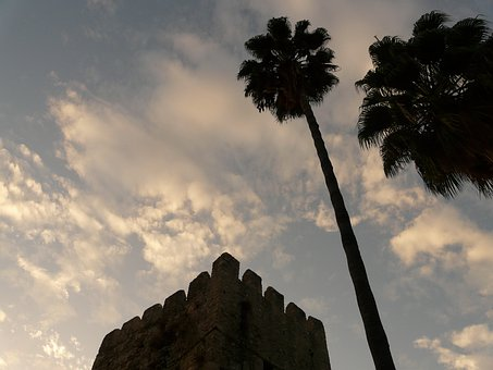 Palm Trees, Tribe, High, Tower, Building, Backlighting