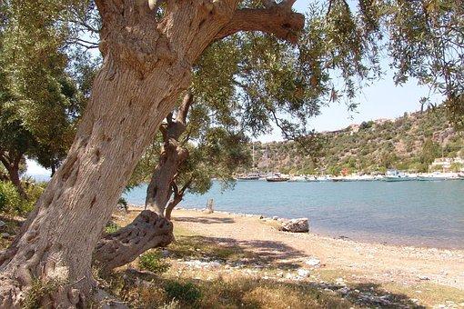 Turkey, Jasos, Landscape, Holiday