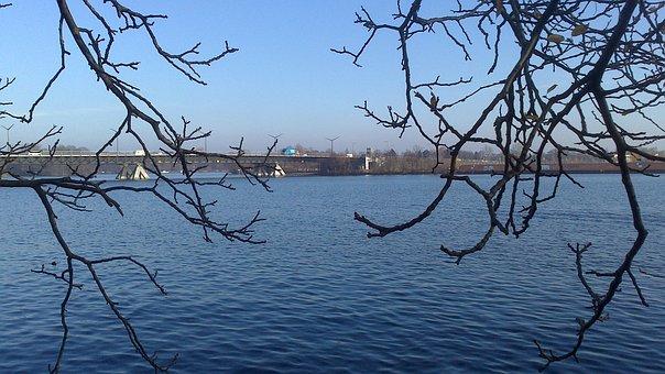 Berlin, Spnadau, Water, Waters, Nature, Trees
