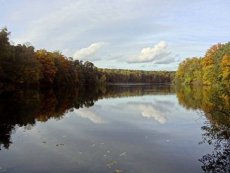 Lake, Krumme Lanke, Autumn, Nature