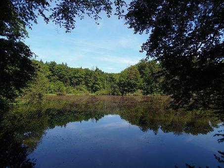 Landscape, Lake, Nature, Hungen, Three Ponds
