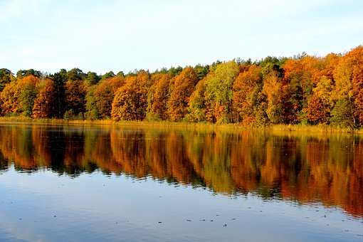 Nature, Autumn, Trees, Lake, Krumme Lanke