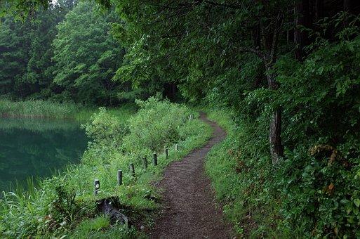 Lake Shibire, Lane, Lake, Natural