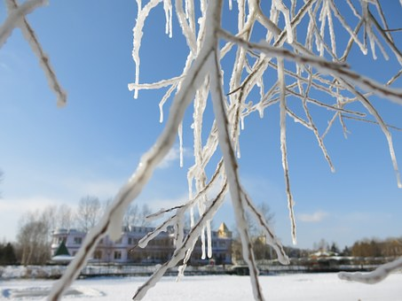 Snow And Ice, Hanging Tree, Blue Sky