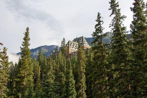 Banff Springs Hotel, Banff, Alberta, Canada, Forest