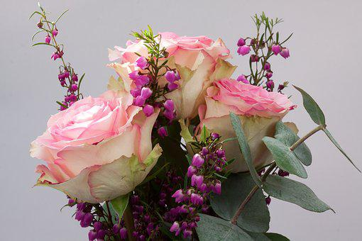Bouquet, Rose, Erika, Macro, Flower, Composites, Autumn