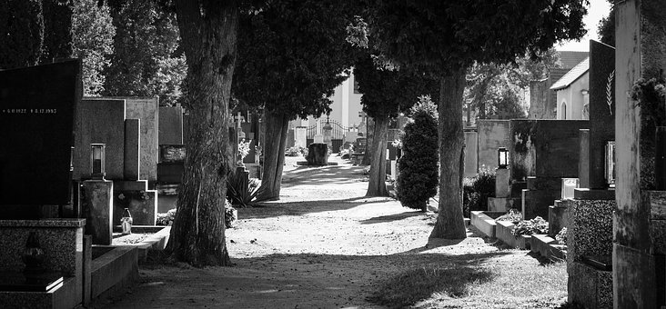 Cemetery, Graves, Path, Alley, Still, No People