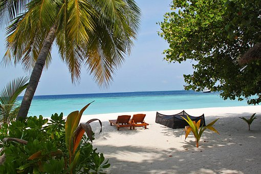 Chair, Relax, Rest, Tree, Happy, Beach, Vacation