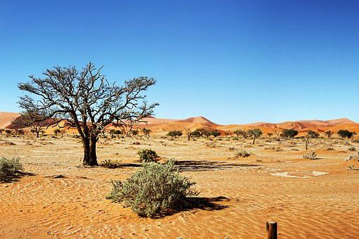 Desert, Namibia, Dunes, Sand, Sand Dune, Sossusvlei