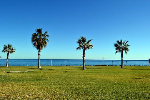 Landscape, Palm, Mojacar, Spain, Resort, Coast Line