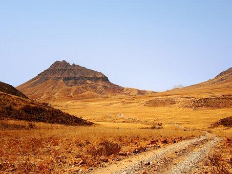 Road, Track, Desert, Hill, Rocks, Tree, Lonely, Barren