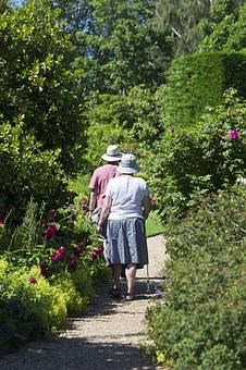 Elderly Couple, Garden Path, Walking, Rose Bushes