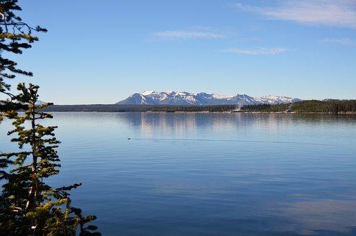 Lake, View, Water, Shoreline, Nature, Scenery, Trees