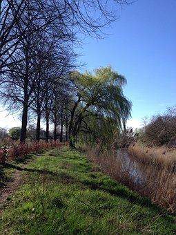 Dommel Valley, Spring, Wind