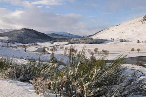 Dee, River, Water, Scottish, Deeside, Scotland