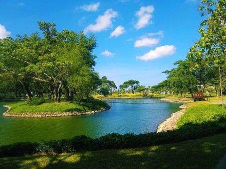 Pond, Green, Hamilo Coast, Landscape, Wilderness