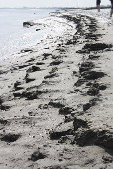 Beach, Water, Sea, Burhave