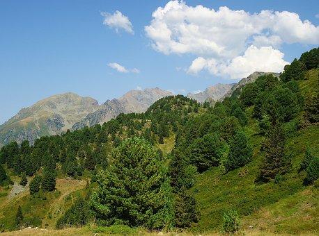 Mountain, Chamrousse, Summer, Landscape, Alps, Ride