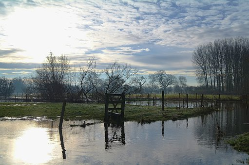 Flooded, Frost, Winter, Fields, Countryside, Country