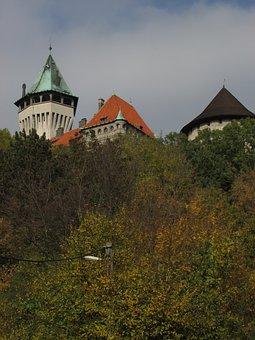 Forest, Tower, Smolenice, Slovakia, Castle