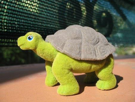 Turtle, Toy, Reptile