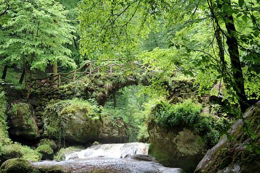 Bridge, River, Mullerthal, Gorge, Landscape